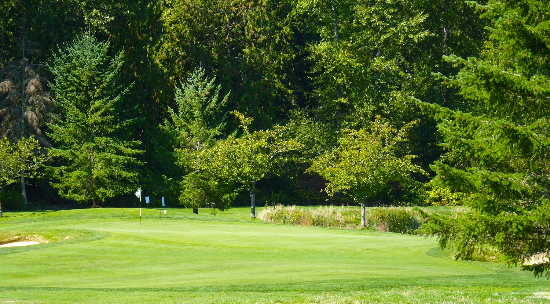 Golf instruction in Redmond with Tom Sovay
